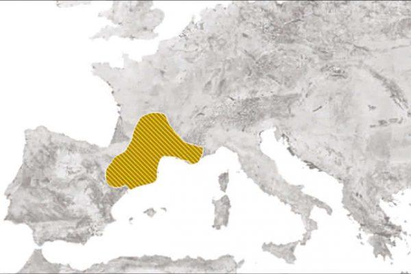 6 mapa